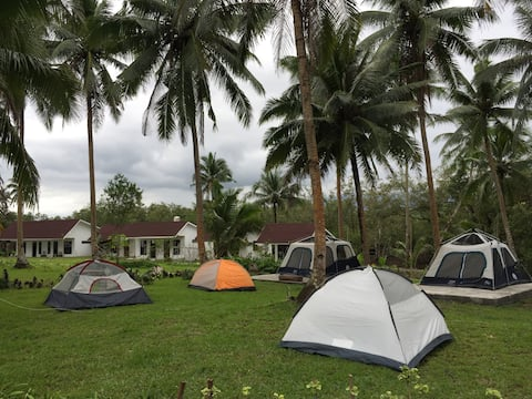 Lush Green Camp Site dormitory