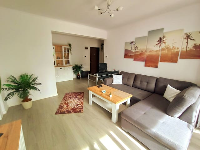 Second sleeping place in Living room for 2 guests on a very confortable and extendable sofa ---  Work space at a well lit desk with generous space, multi-outlet, 1000Mbs internet cable, Wi-Fi 433Mbs and a nice view through window