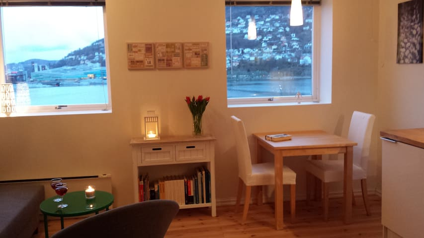 Beautiful two room apt, great view, garden, quiet - Bergen - Appartamento