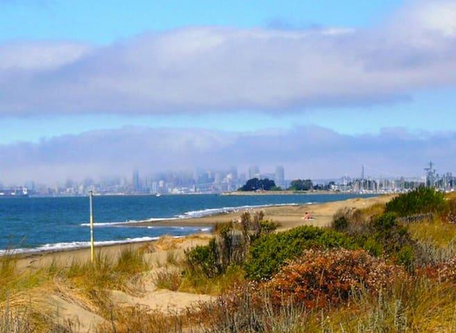 Island City Retreat