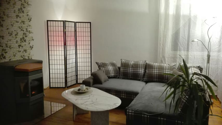 Zentral und doch ruhige Wohngegend - Donaueschingen - Apartment