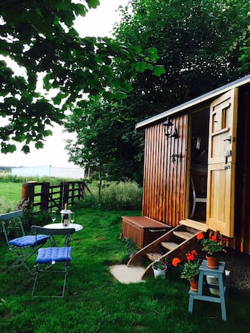 Idyllic Northumberland Shepherds Hut and Owl Trust - Longhorsley - Pis