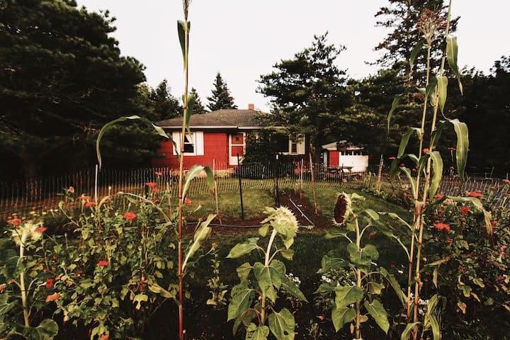 Thelma's Garden Cottage