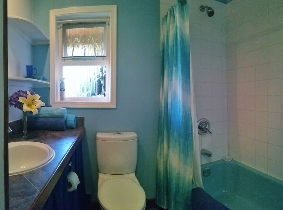 4 piece bathroom. SHARED with owner.