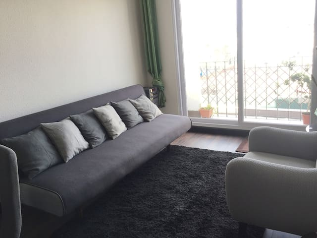 Coach in living room, near to historic center!