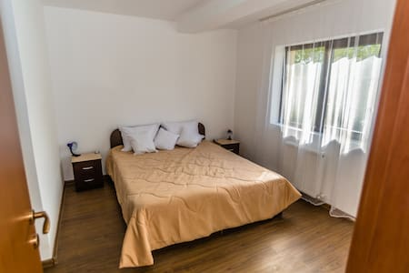 Double Room in La Familia Guest House - Pucioasa - 其它