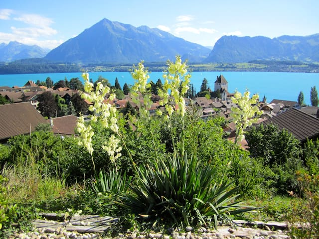 "OTIUM- VERENA ""Garden apartment with lake view"""