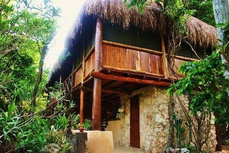 Akumal, Beautiful Jungle Palapa, private cenotes