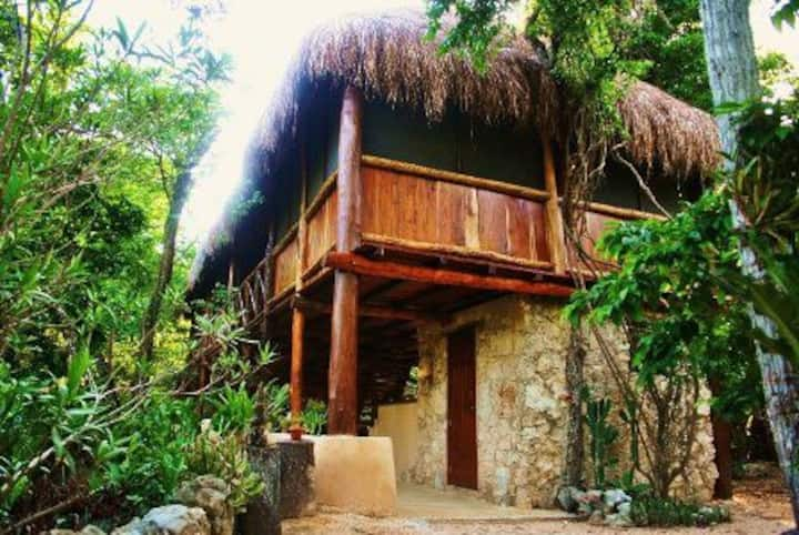 Charmin jungle cabin, private cenote