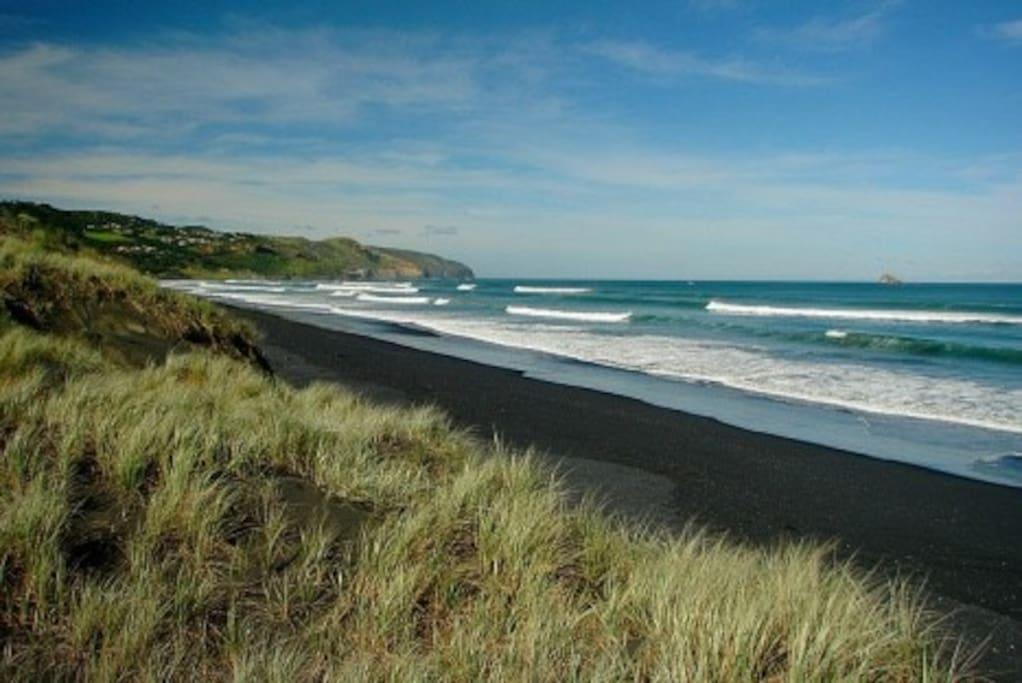 Beautiful Black Sand at Muriwai Beach