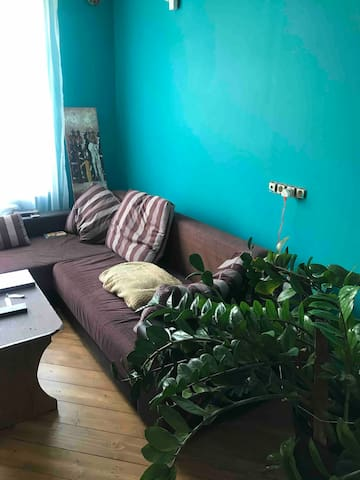 Удобный диван, приятное растение