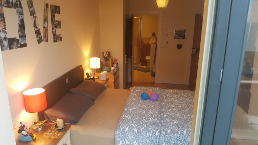 Lovely Ensuite, Balcony & Rooftop in Dublin Heart
