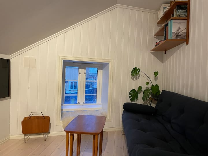 Lovely apartment in the old town Bakklandet