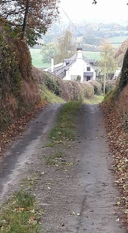 Approach to the cottage down the no through lane.