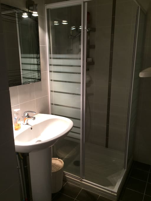 Private shower room with private WC in the next room