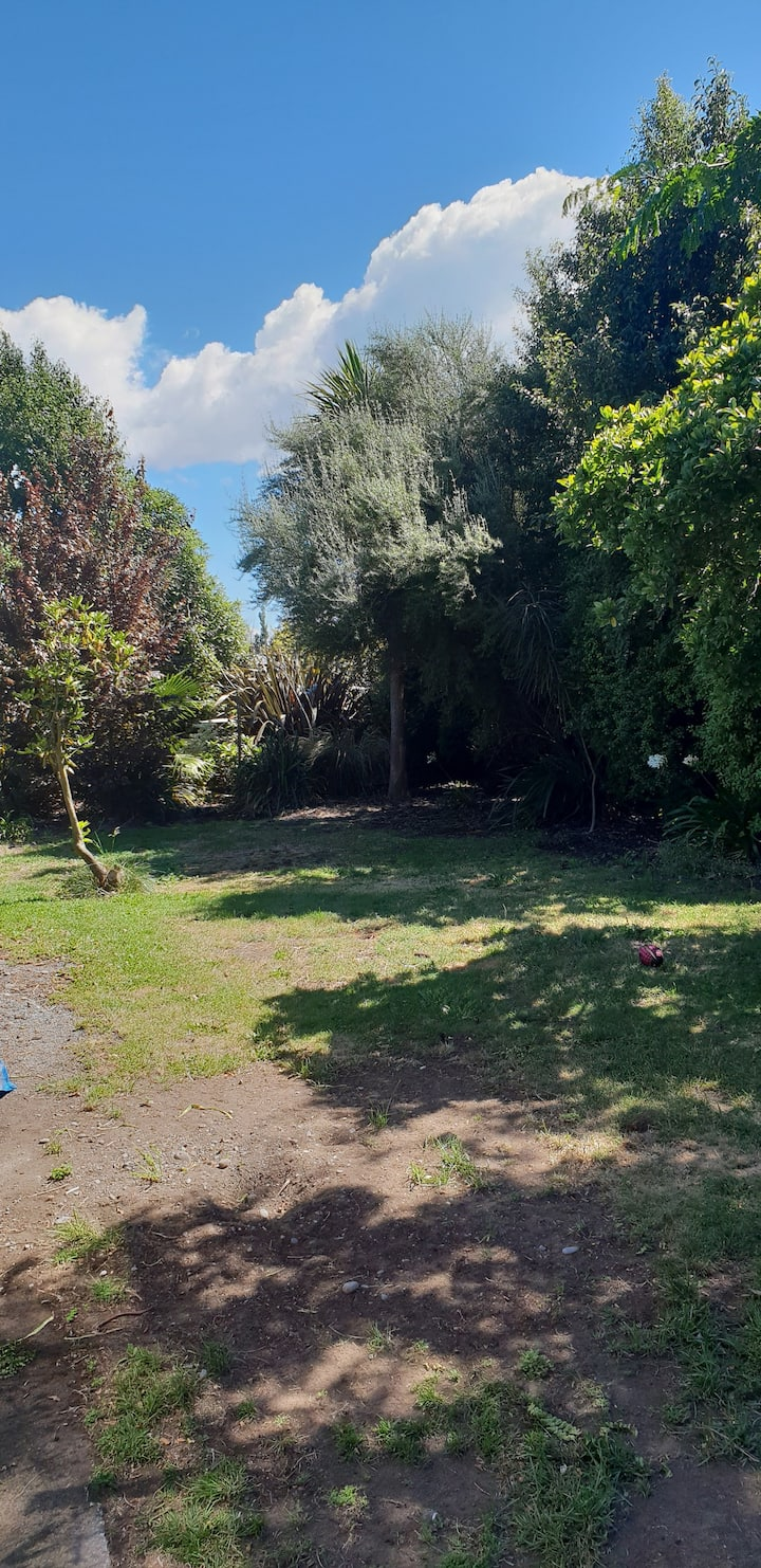 Beautiful Spencer park and beech.