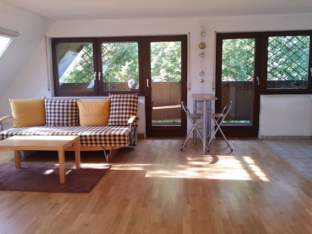 Spacious apartment 15 minutes from Heidelberg