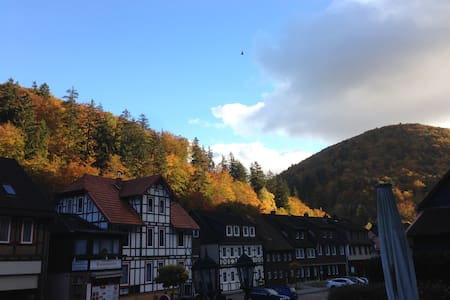 Lovely Location Apart with *WiFi*, South-Harz! 10 - Zorge