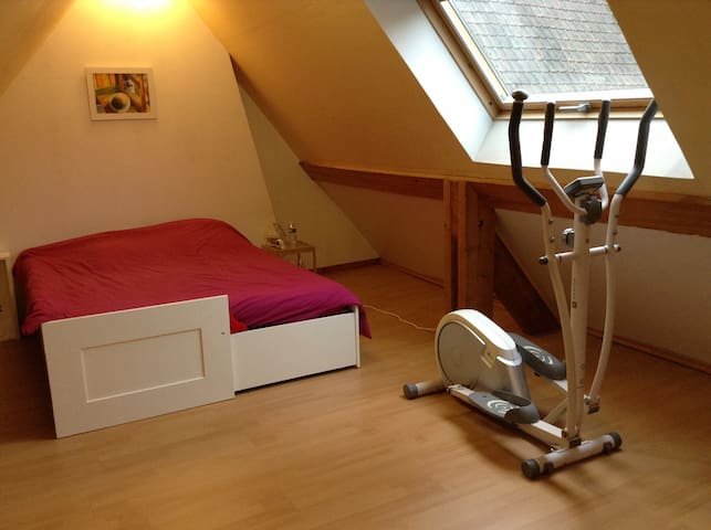 Chambre spacieuse et reposante ! - Cassel - Wohnung