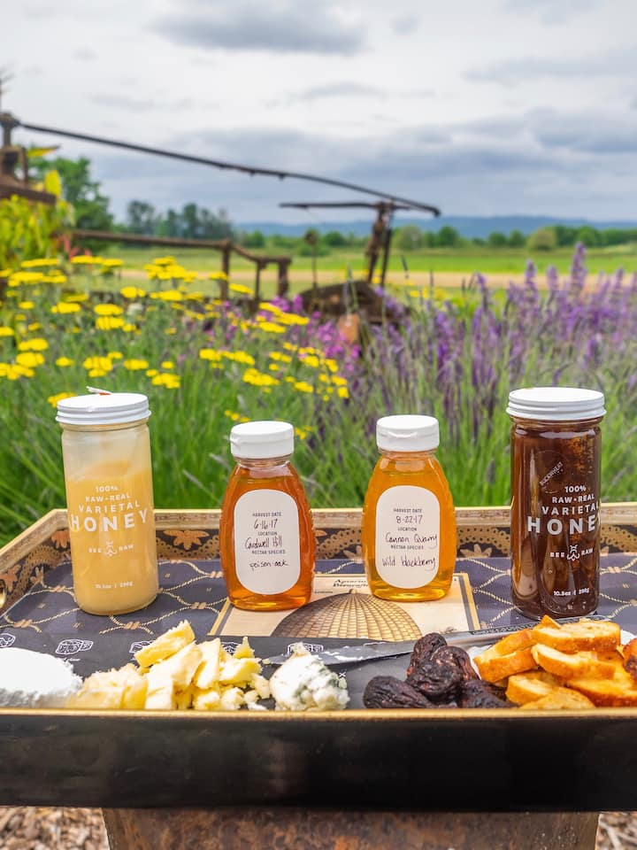 Honey & cheese tasting by the river