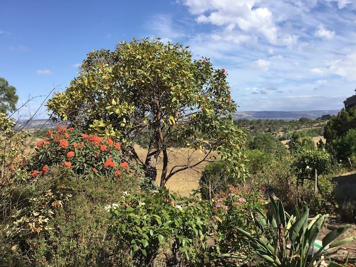 Romantic Retreat in the Adelaide Hills.