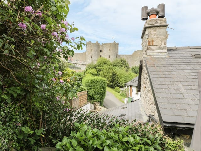 HEDD, pet friendly, character holiday cottage in Harlech, Ref 946803