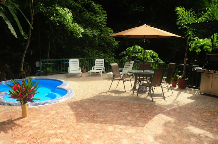 Deck and Pool w/ BBQ area