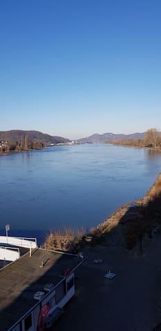 Neu! Villa Profitlich direkt am Rhein