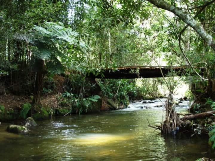 Chalé Caribe - Paz e Harmonia junto a Natureza
