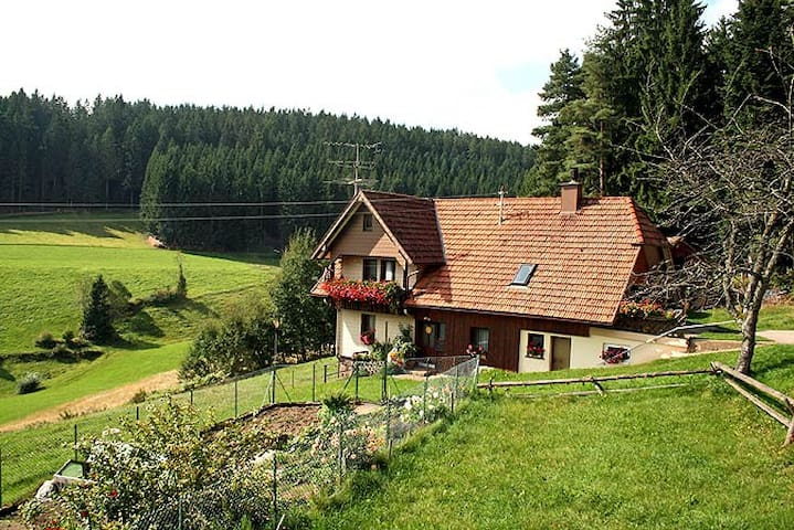 Complete flat in the middle of the Black Forest! - Schramberg - Daire