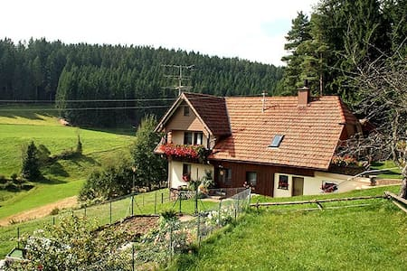 Complete flat in the middle of the Black Forest! - Apartemen