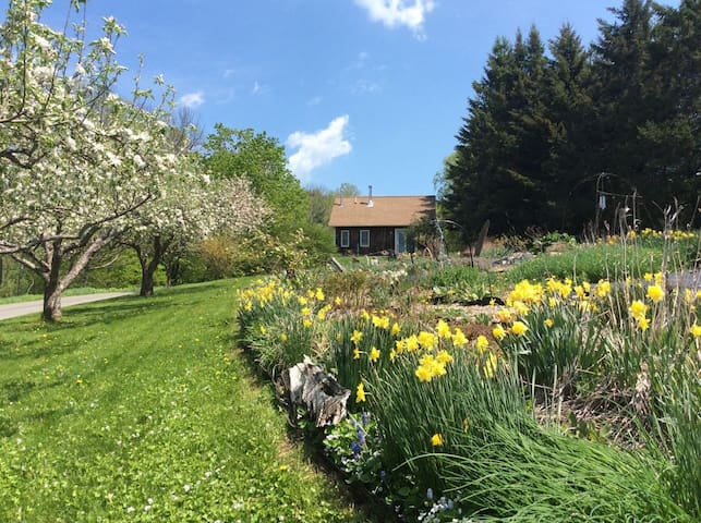 dreamy woodland decor to try better homes gardens.htm airbnb   pomfret vacation rentals   places to stay vermont  airbnb   pomfret vacation rentals