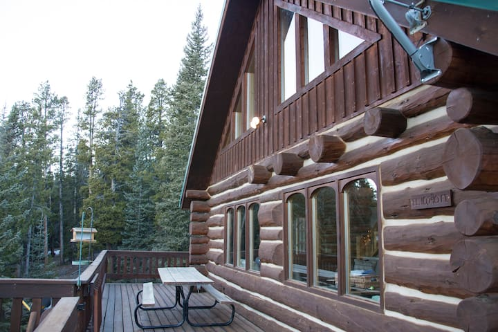 Beautiful Secluded Log Home on 6 Acres - Fairplay - Ev