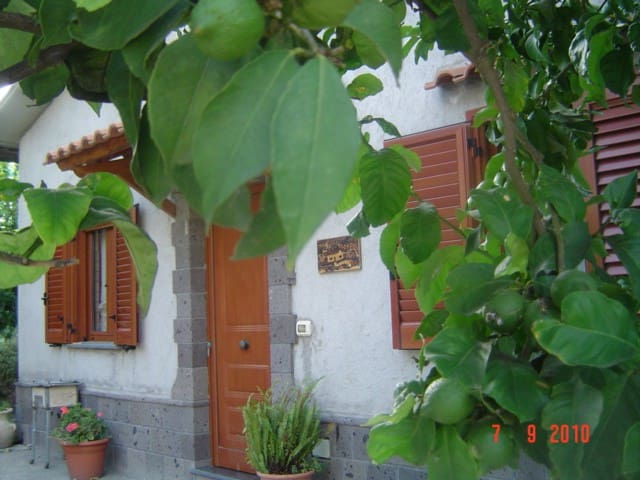 nice cottage endependent with private garden - Schiazzano - Casa