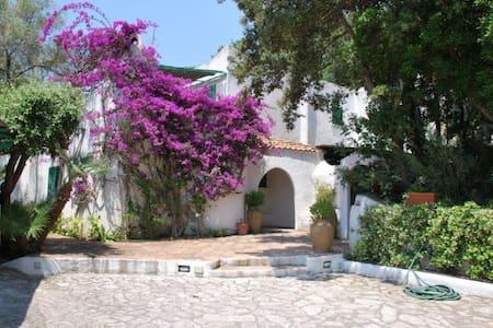 Villa loc. Punta Rossa-Circeo - Punta Rossa - 別荘