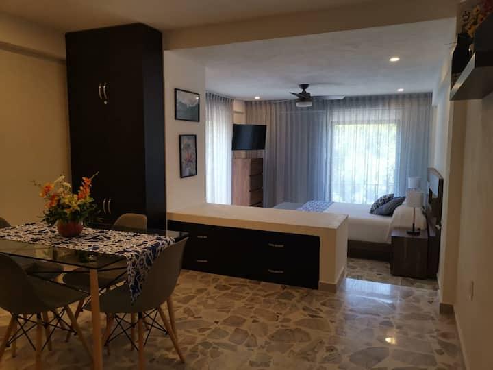 Beautiful and cozy studio in Puerto Vallarta