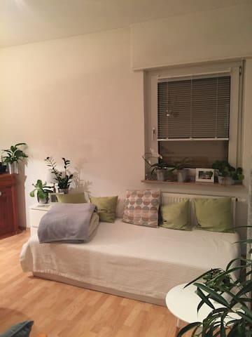 Schönes, helles Zimmer in Top-Lage - Landau in der Pfalz - Apartemen
