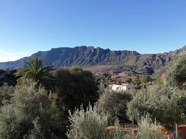 Casa rural Mederos - Canarian country house