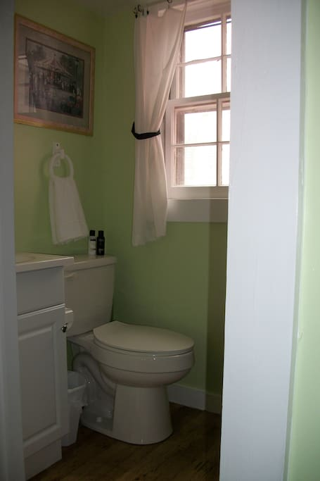Bathroom.   Large shower is opposite the toilet and sink, although not visible in this picture.
