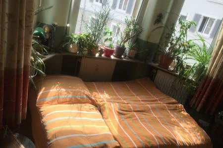 Erker-Room