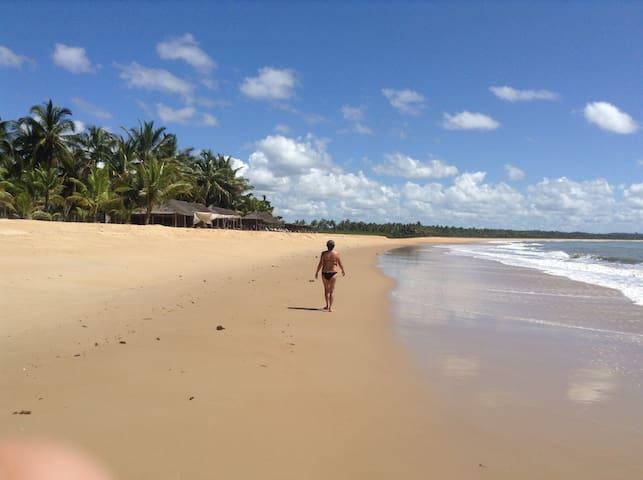 Alegria dos tropicos ! Alegresse des tropiques ! - Santa Cruz Cabrália