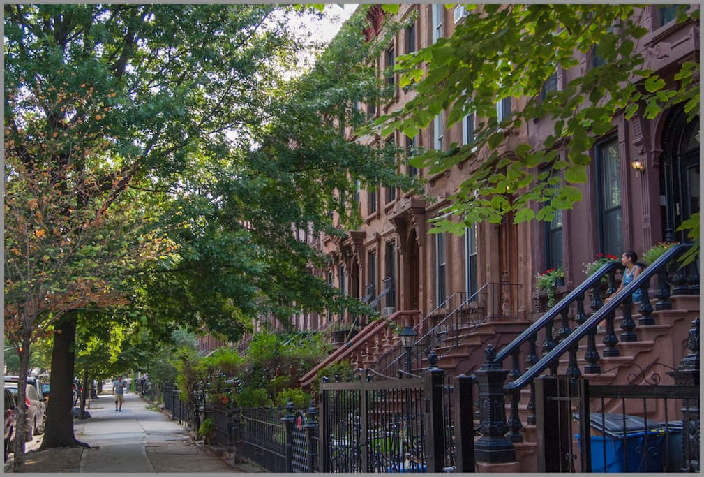 Willoughby Avenue is lined with historic Brownstones and beautiful old trees.