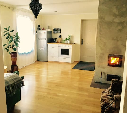 Sunny apartment centrally located ! - 塔林 - 公寓