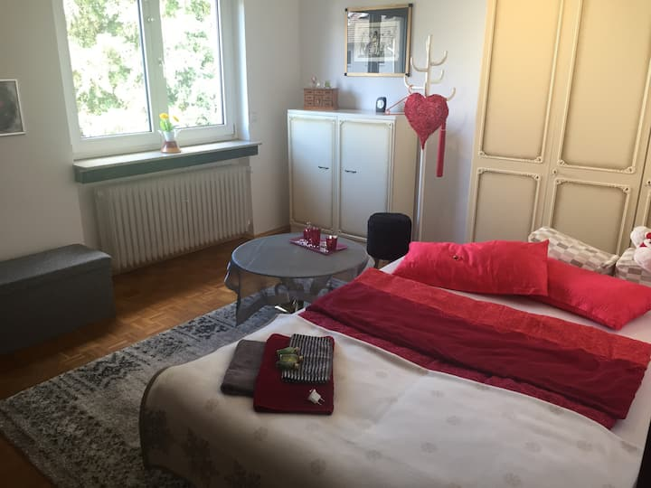 Room within a lovely house - close to the airport