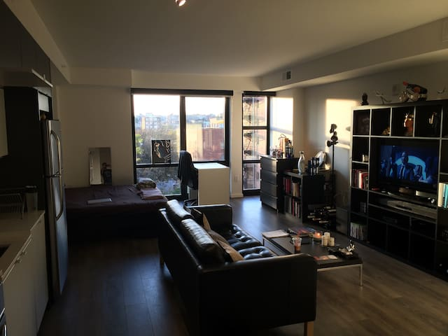 Spacious luxury studio 10 mins from Downtown
