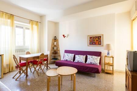 Comfortable flat in Rome