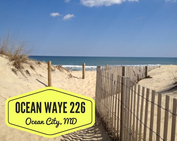 Ocean Waye 226 - NEW Studio w/ Beach Access!