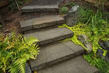 Steps ascend from garden to street parking