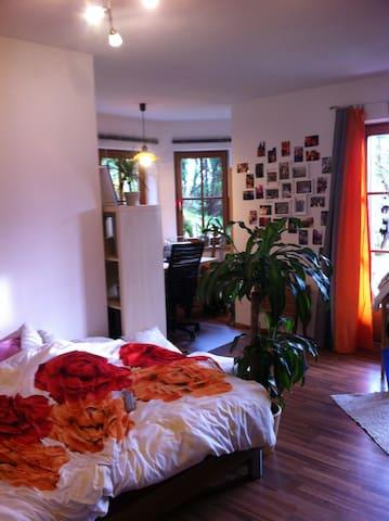 """1-Zi.-Wohnung """"Erholung pur"""" - Furtwangen im Schwarzwald - 公寓"""
