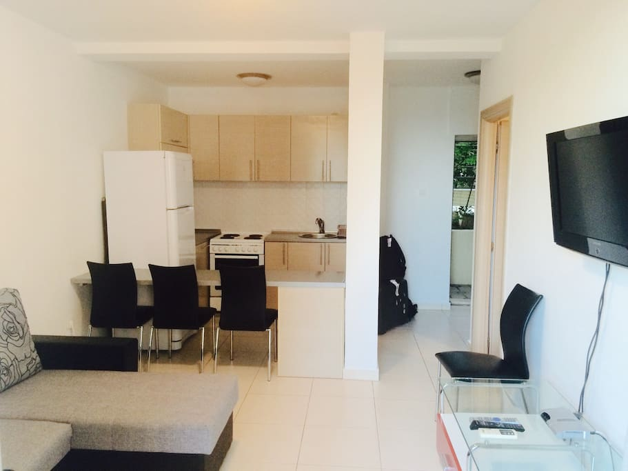 Kitchen-living room (studio) folding sofa, tv, bedside table, fully equipped kitchen , a/c